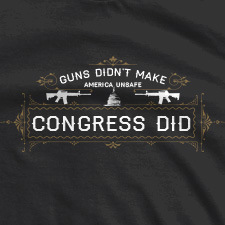 GUNS DIDN'T MAKE AMERICA UNSAFE CONGRESS DID