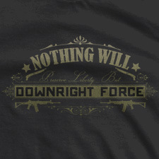 NOTHING WILL PRESERVE LIBERTY BUT DOWNRIGHT FORCE